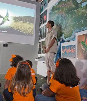 Museo Infantil Trampolín- Sala Naturaleza, Relación y Equilibrio